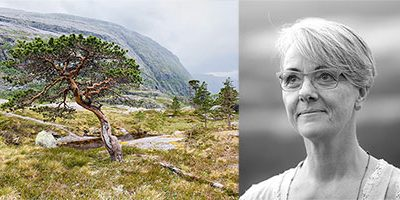 Sylvia Kabelka zur ÖfS Tagung